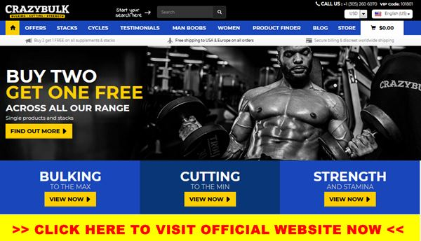 best bodybuilding supplements united states